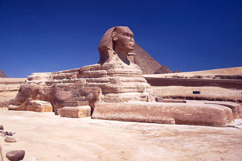 androsphinx