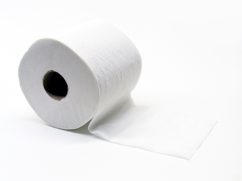 Toilet Roll Definition And Synonyms